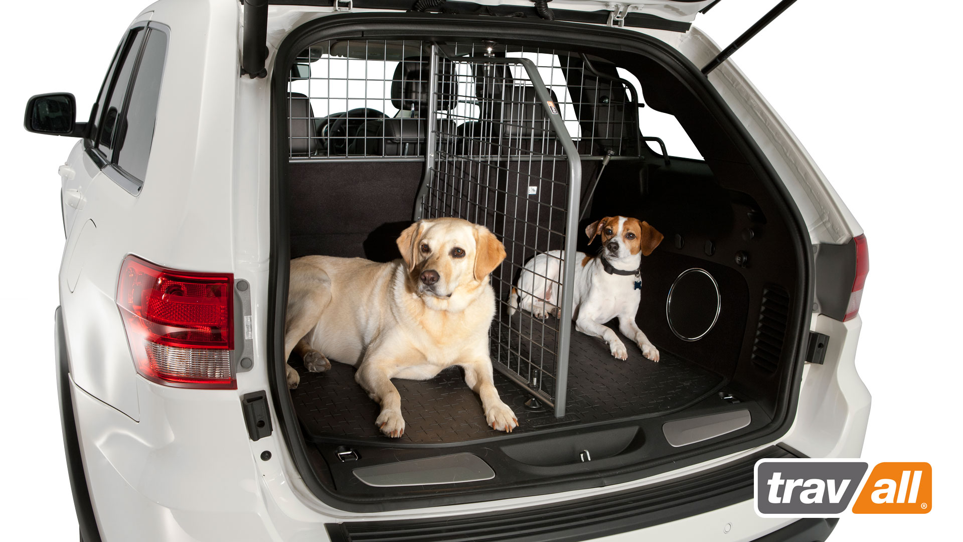 Two dogs lying down comfortably in the trunk of a white vehicle that has a Travall Guard and Travall Divider installed in it