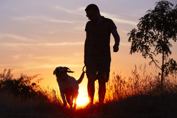 Man walking dog at dusk.jpg