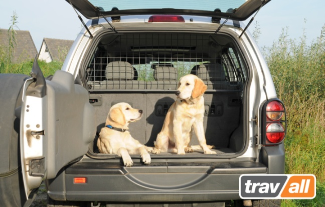 Dogs in back of Jeep